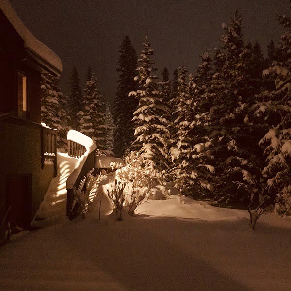 Postcard #45, From Canmore, Alberta: Snow